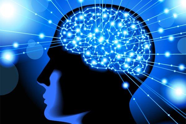 psicologia e neuroscienze